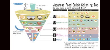 Japanese Food Guide Spinning Top